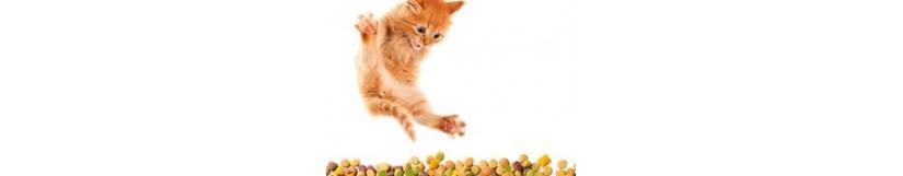 BioPetFood olie, tabletten en aanvullende producten voor katten